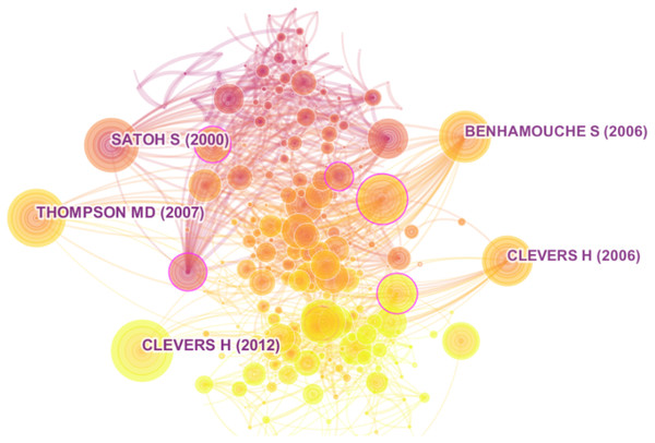 Top 5 manuscripts with highest co-citation in network.