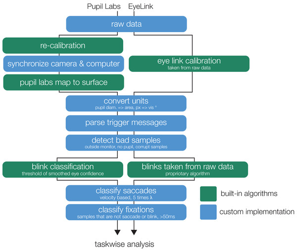 Analysis flowchart. The flowchart illustrates the parallel steps from the recorded raw data to eye movement events (containing properties on fixation-, saccade-, and blink-events).