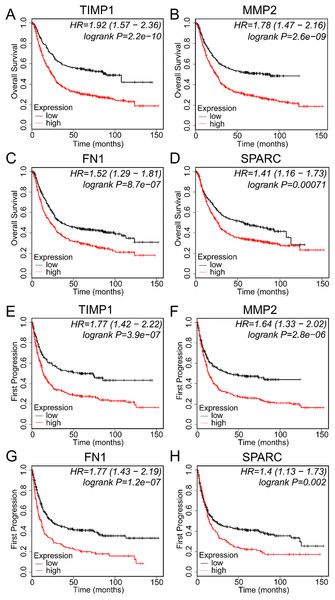 Prognostic values of EMT-related genes correlated with SERPINE1 in gastric cancer patients.