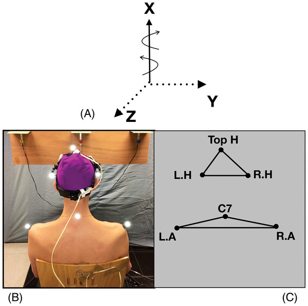 Head, shoulders markers and rotational axes.