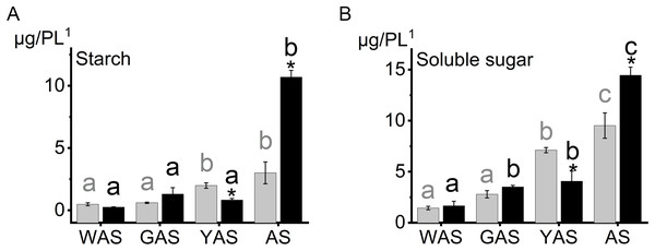 Starch, soluble sugar content in lodicules of YM18 (gray column) and ZK001 (black column).