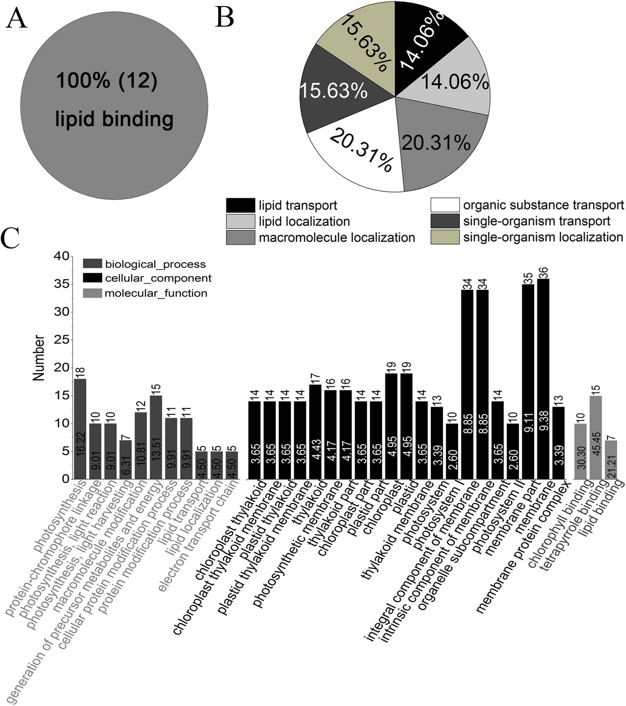 f06de2589 iTRAQ-based quantitative proteome analysis reveals metabolic changes ...