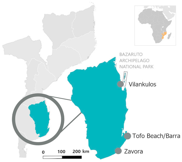 Location of the three study sites in the Inhambane Province coastline, Mozambique.
