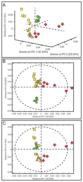 Score plots from PCA applied to 1H-NMR spectra of rat urine samples from control rats and rats with AKI–CKD transition induced by folic acid.