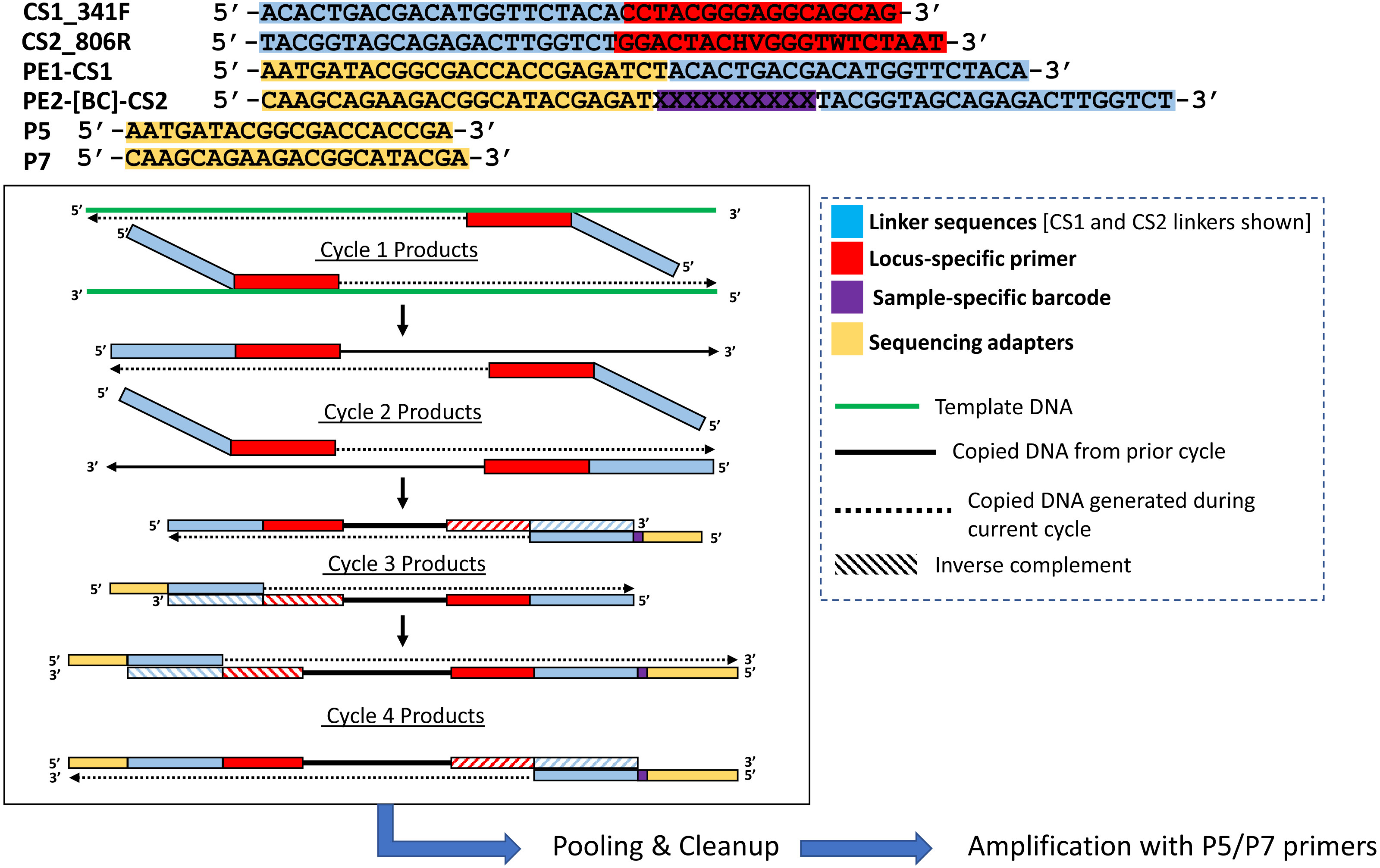 Deconstructing the Polymerase Chain Reaction II: an improved