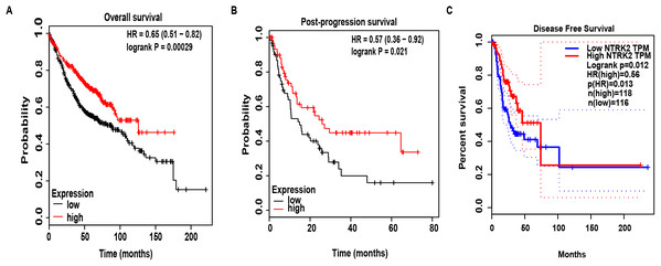 The effects of NTRK2 expression on prognosis in LUAD patients.