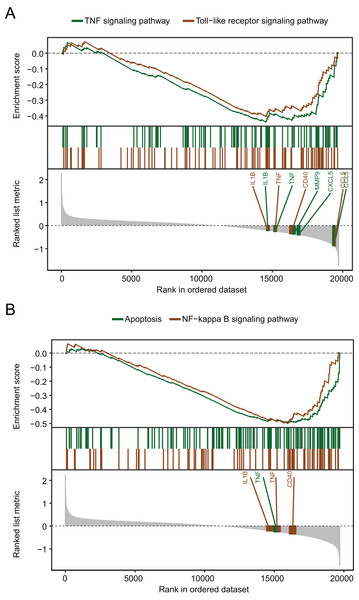 Gene set enrichment analysis of the gene expression profiles of the GSE98793 dataset.