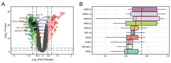 Genetic screening for hub genes in patients with major depressive disorder.