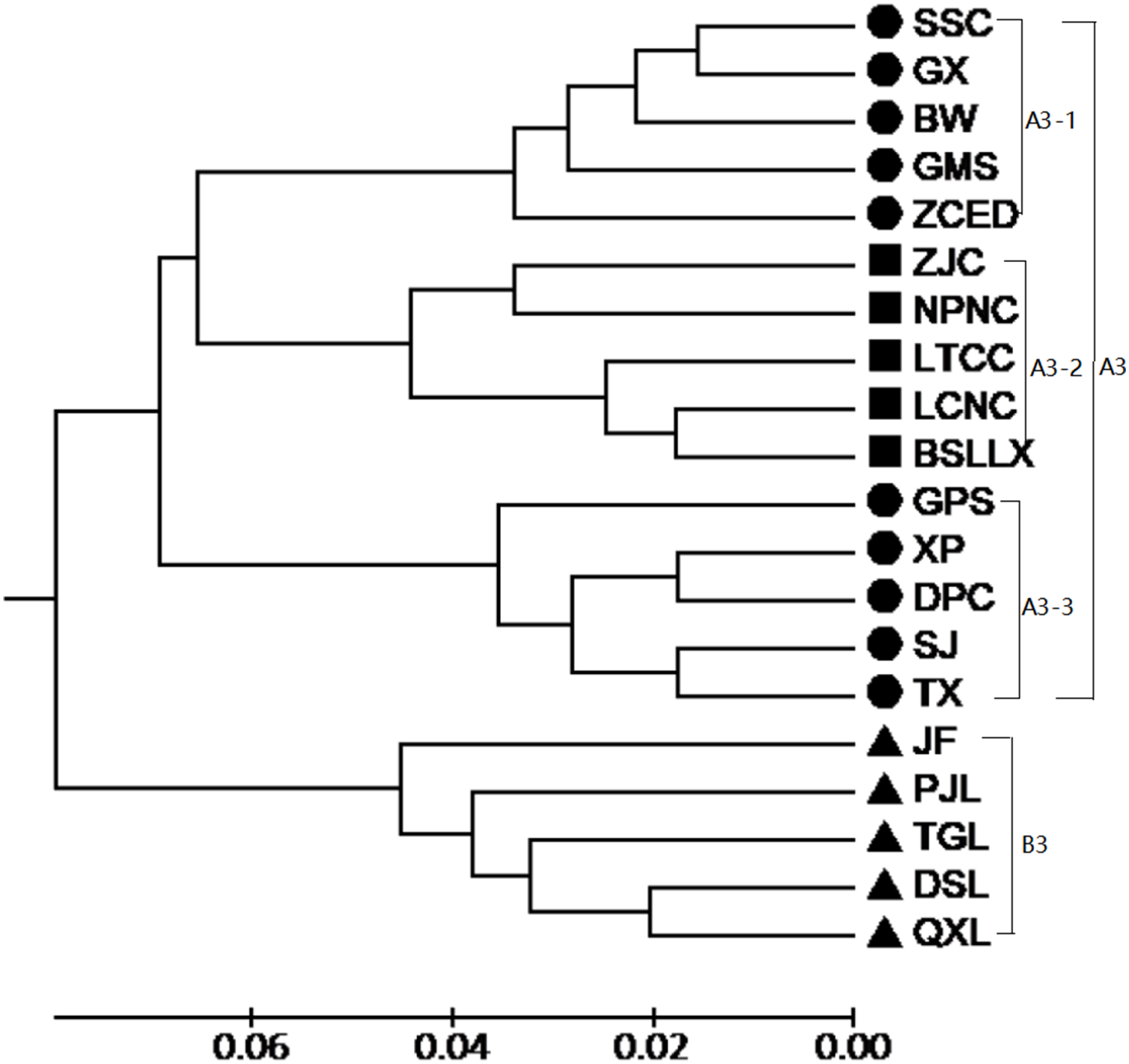 Analysis of genetic population structure and diversity in Mallotus
