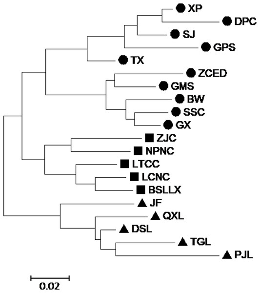 Neighbor-joining (NJ) cluster for 20 populations of M. oblongifolius combined SRAP and ISSR data.