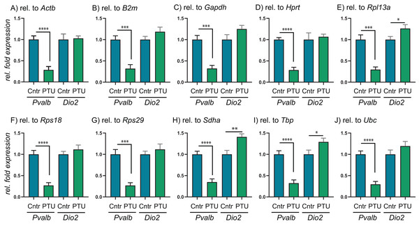 Relative expression levels of Pvalb and Dio2 in cerebral cortex of juvenile male rats after in utero exposure to PTU, normalized by different RGs.