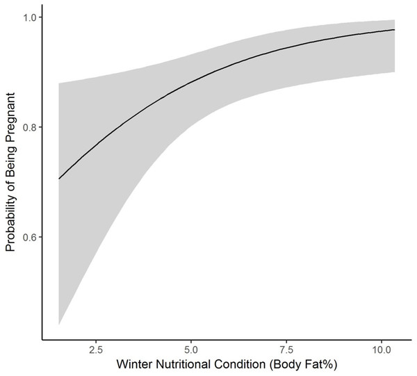 The plotted relationship indicates a slightly increasing probability of being pregnant as winter nutritional condition increases for elk in the Black Hills, 2011–2013, South Dakota.