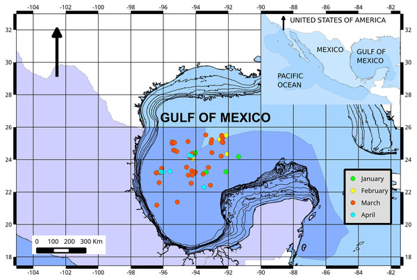 Fishing ground locations of Atlantic bluefin tuna caught by month (2015) in the southern Gulf of Mexico.