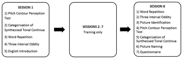 Tasks completed in each of the eight sessions.