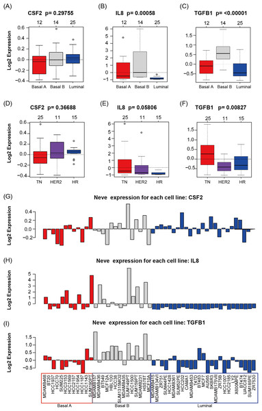 CSF2, IL8, and TGFβ1 expression in human breast cancer cell lines with GOBO analysis.