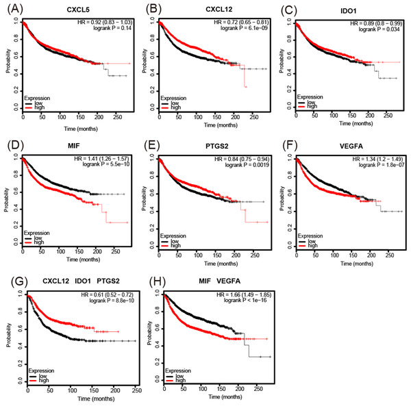 Kaplan-Meier Plotter determined the relationship between the overall survival rate and mRNA expression levels of 6 immunosuppressive factors using microarray data from 3,951 patients.