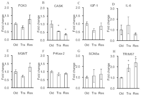 Quantitative real-time PCR verifications for the selected genes of the control rats and the rats treated with exercise training and resveratrol feeding.