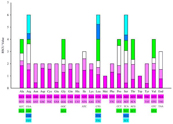 20 amino acid codon and stop codon of the island plant Hainan C. oleifera chloroplast genome.