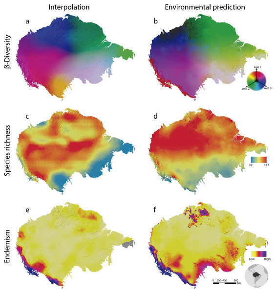 Amazonian bird diversity patterns based on Birdlife International data analysed through BioDinamica functions.
