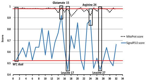 Bioinformatics analysis of the N-terminus of TgTPx1/2.
