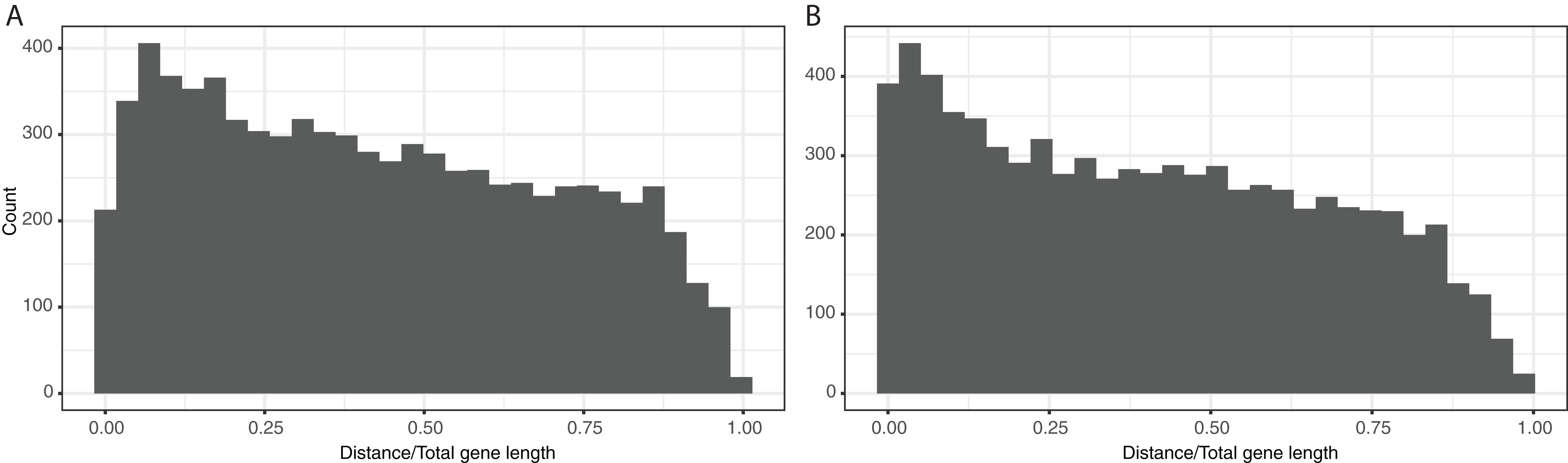 The comparative population genetics of Neisseria meningitidis and