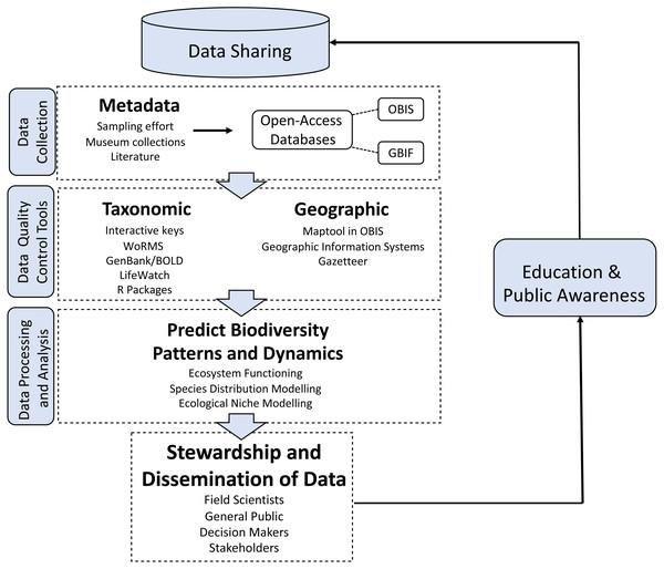 Biodiversity data processing.