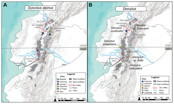 Map of the Ecuadorian Andes displaying sites where samples of ground beetles were collected.