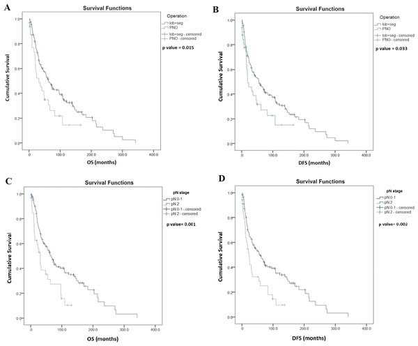 Kaplan–Meier survival curves for overall survival (OS) and disease-free survival (DFS) in resected SCLC patients according to the type of lung resection surgery (n = 187) and lymph node status (LN) (n = 176).