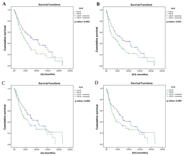 Kaplan–Meier survival curves for overall survival (OS) and disease-free survival (DFS) in resected SCLC patients according to NLR and PLR (n = 155).