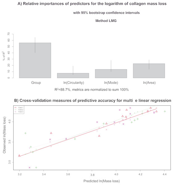 (A) Relative importance of predictors (in terms of R2; in the multivariate linear model) that explain the collagen mass loss; (B) observed values vs. model predictions when 2/3 of data was utilized as a training sample via a cross-validation procedure to evaluate predictive accuracy of the model.