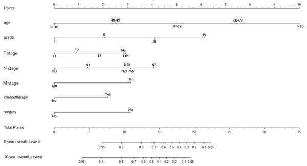 Nomogram of prediction for 5-year and 10-year overall survival.