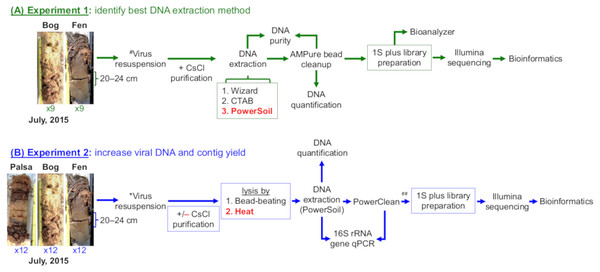 Overview of experiments to optimize methods for virome generation.