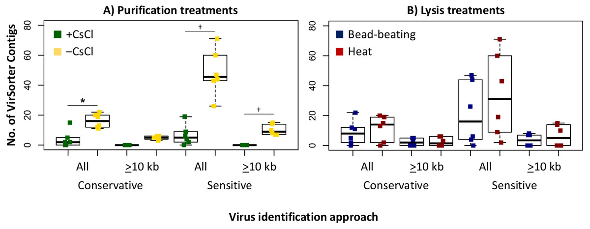 Towards optimized viral metagenomes for double-stranded and