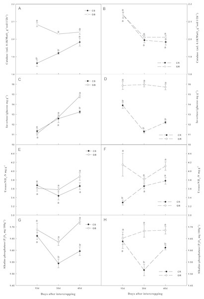Effect of intercropping with green garlic on the activities of soil catalase (A–B), invertase (C–D), urease (E–F) and alkaline phosphatase (G–H) in the bulk and rhizosphere soils of cucumber.