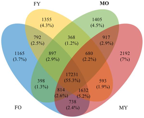 A Venn diagram of four transcript datasets.