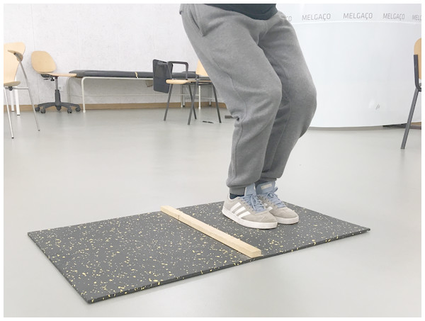 Motor competence—lateral jump test.