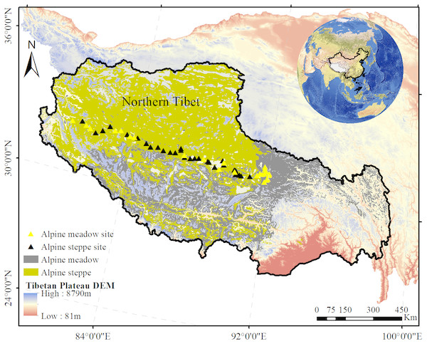The distribution of sampled sites in alpine grasslands across northern Tibet Plateau.
