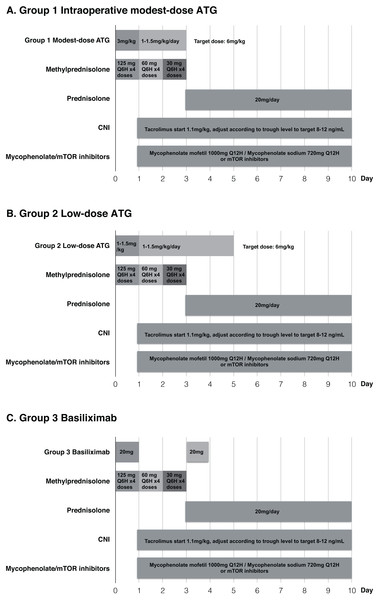 Immunosuppressive regimens in the three groups.