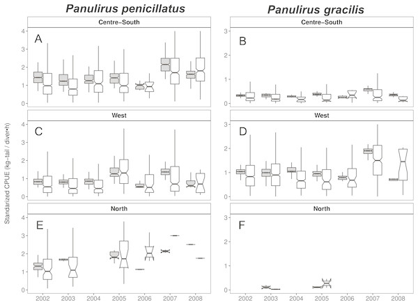 Catch per Unit Effort (CPUE, kg-tail/diver h, white) and Standardized CPUE (gray) in three regions of the Galapagos Marine Reserve from 2002–2008 for Panulirus pencillatus and P. gracilis.