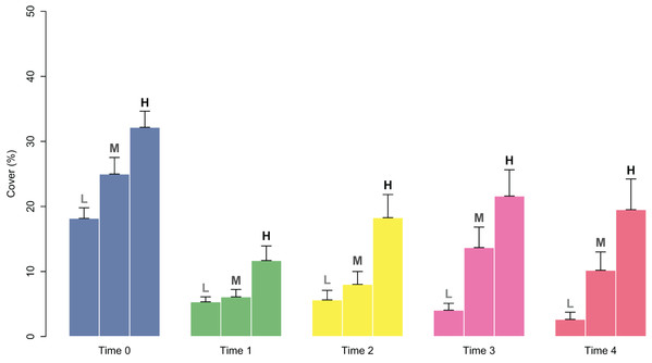 Percent cover of C. amentacea juveniles (average + SE) in each cover class (Low-L, Medium-M, High-H) on the clay tiles over time (Time 0–Time 4) at the start of the experiment.