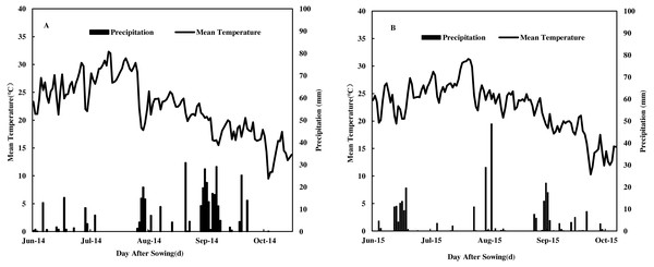 Daily mean temperature, precipitation during the maize growing seasons in 2014 (A) and 2015 (B) at Yangling District, Shaanxi Province, China.