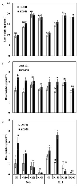 Root dry weight of maize in 0–20 cm (A), 20–40 cm (B) and 40–60 cm (C) soil layer at anthesis of two hybrid variety under various nitrogen (N) application rates in 2014 and 2015.