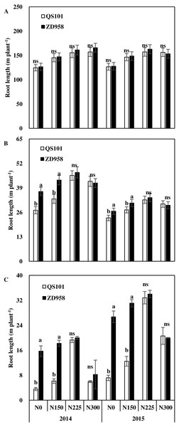 Root length of maize in 0–20 cm (A), 20–40 cm (B) and 40–60 cm (C) soil layer at anthesis of two hybrid variety under various nitrogen (N) application rates in 2014 and 2015.