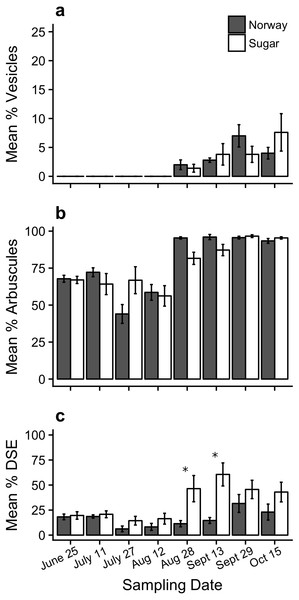 Percent root colonization of mycorrhizal and dark septate endophytes in the Norway maple (Norway) and sugar maple (Sugar) throughout the sampling period (mean ± SE).
