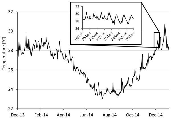 Seasonal and diurnal temperature fluctuation at Lizard Island, northern Great Barrier Reef.