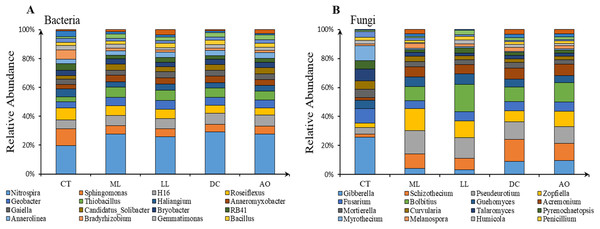 The structure of main soil bacteria (A) and fungi (B) under different land consolidation practices.