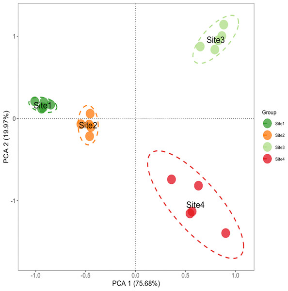 Principal component analysis of soil properties in different soil successional stages.