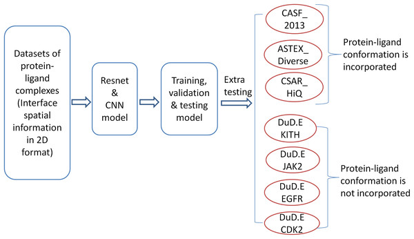 The workflow of model training and testing.