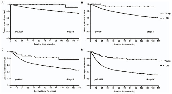 Cancer-specific survival (CSS) curves for patients with laryngeal squamous cell carcinoma stratified by age (40 years) at different tumor stages.