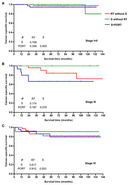 Survival curves for various treatment modalities at different tumor stages for patients <40 years old.